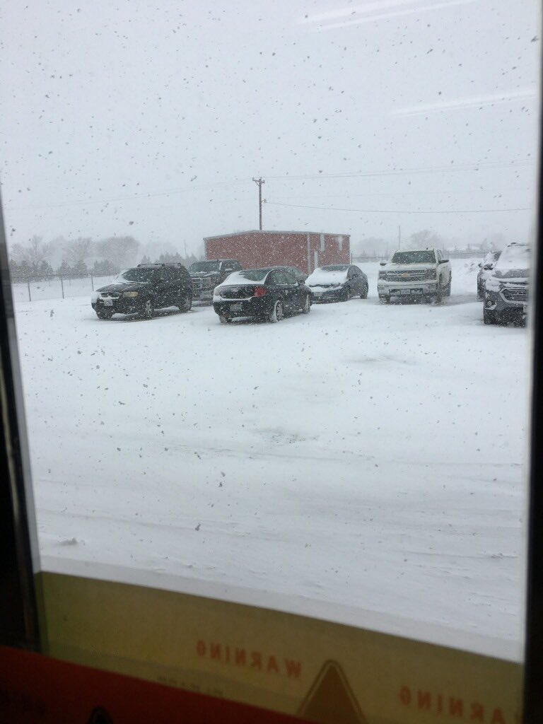 Snow falling in Bovina Tuesday afternoon (4 February 2020). The picture is courtesy of Steve Cobb.