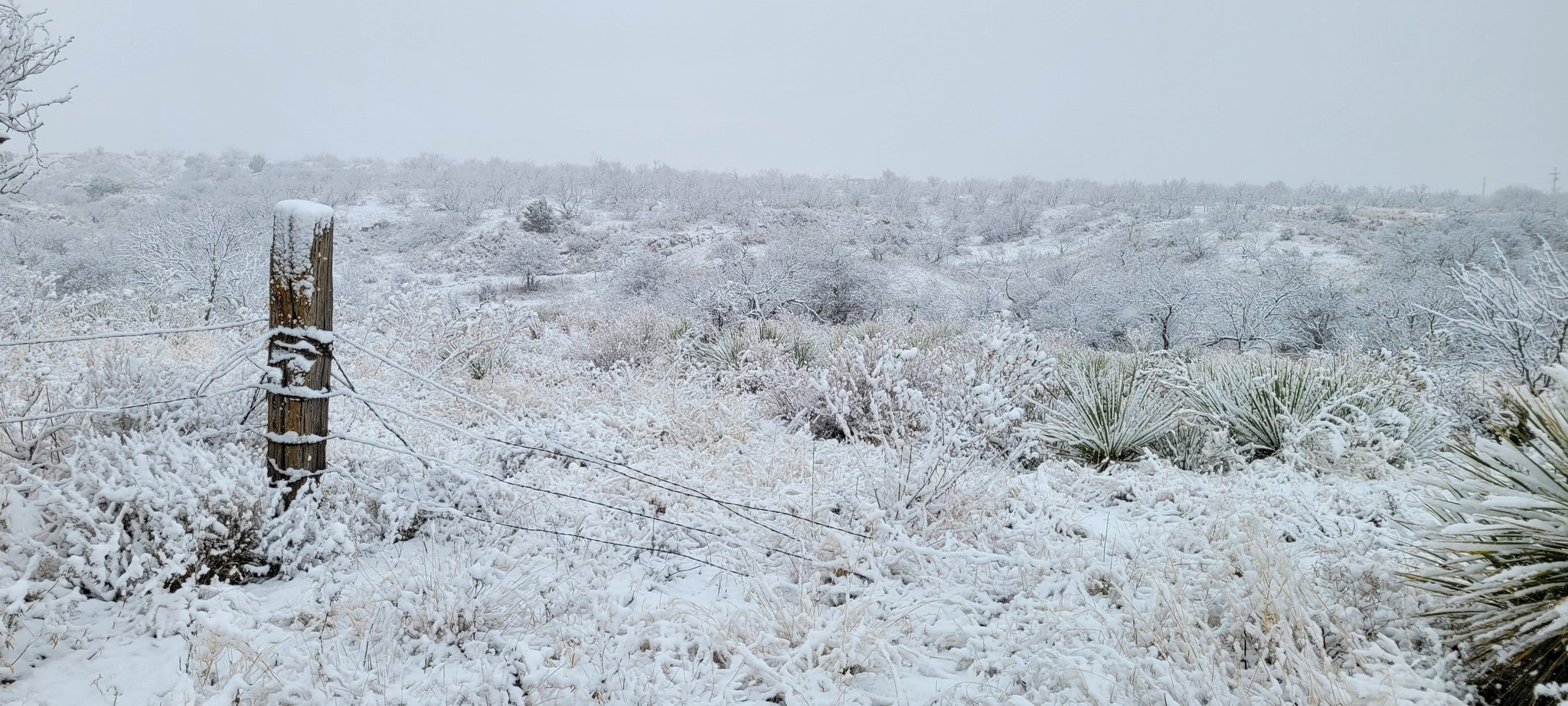 A blanket of snow near Estelline, TX, on Sunday (10 January 2021). The picture is courtesy of Farrah Holcomb.